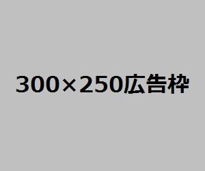 300250koukoku1