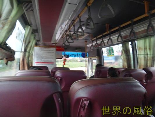 inthe703bus