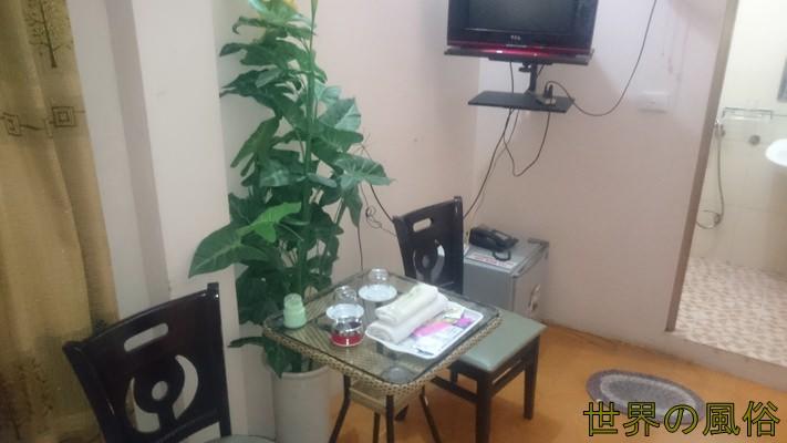 hanoikougaihotel2