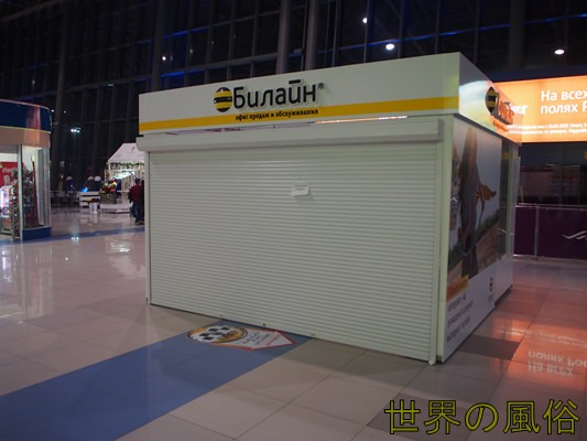 vladivostok-airport-sim-department7